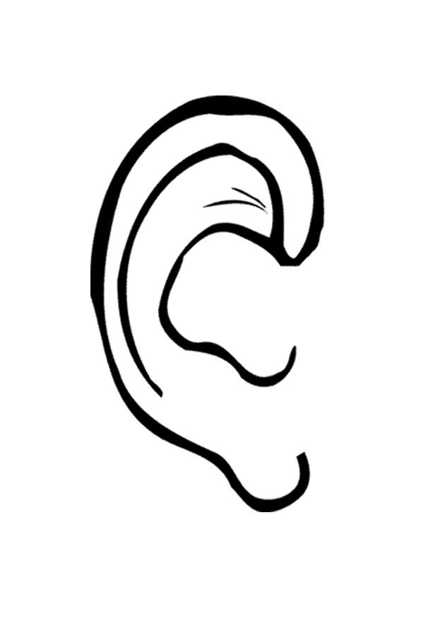 left ear clipart free clip art images image 2