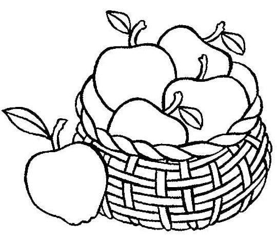 Apple  black and white apple basket black and white clipart