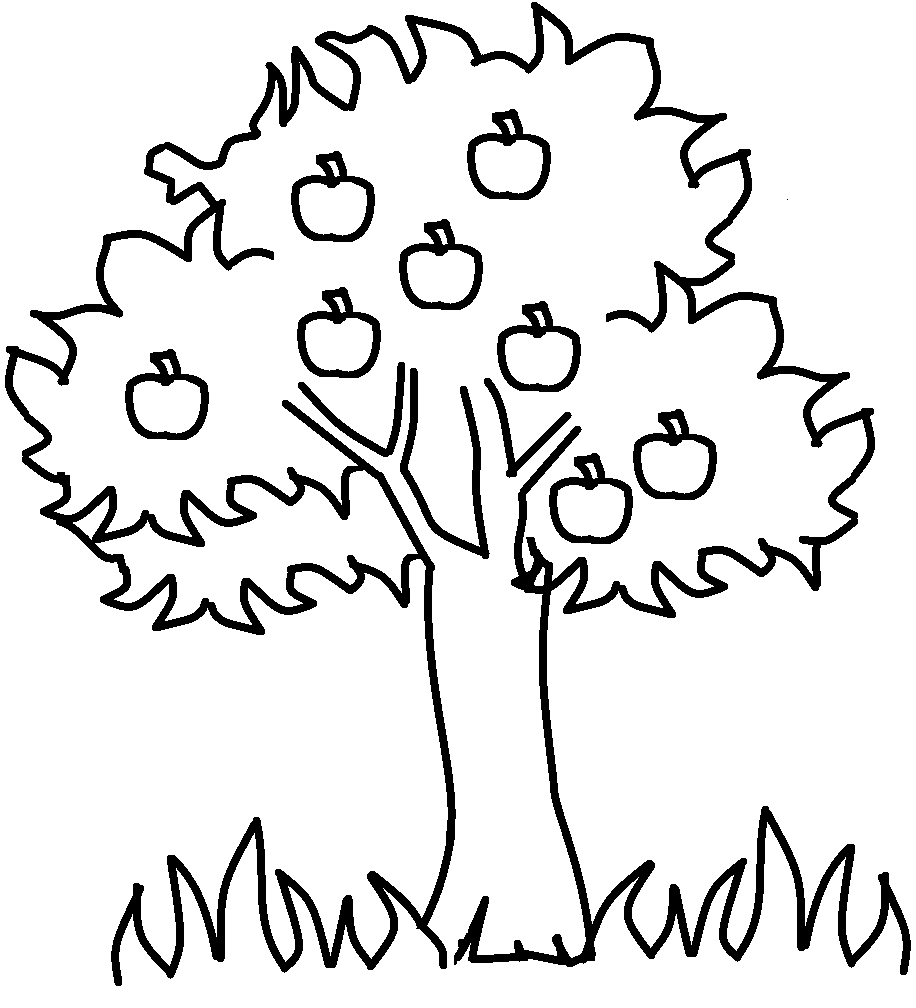 Apple  black and white family tree clip art black and white printable apple coloring