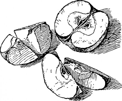 Apple  black and white sliced apple clip art free vector in open office drawing svg