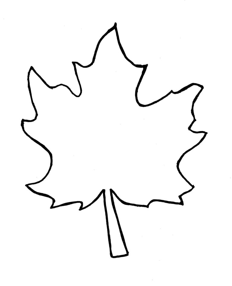Autumn Leaf Outline Template Clipart Free To Use Clip Art Resource 2