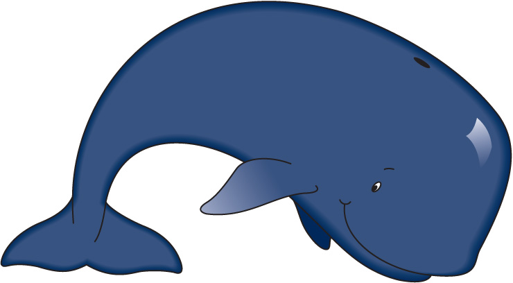 Baby killer whales clipart