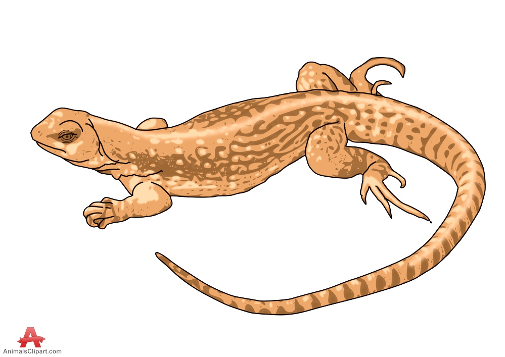 Brown lizard clipart free design download