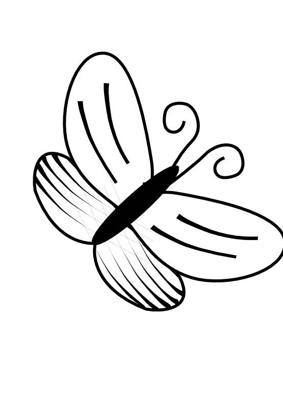 Butterfly  black and white butterfly clip art black and white clip art