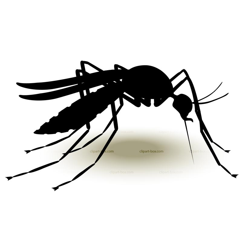 Cartoon mosquito clipart