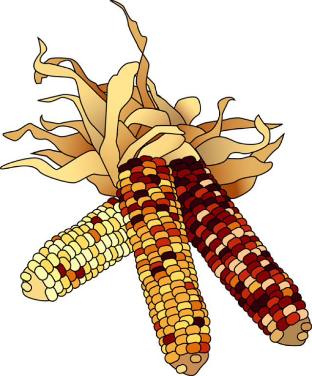 Corn clip art 4 image