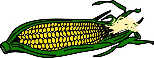 Corn clip art clipart free images image