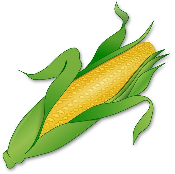 Corn clipart rn clip art vector