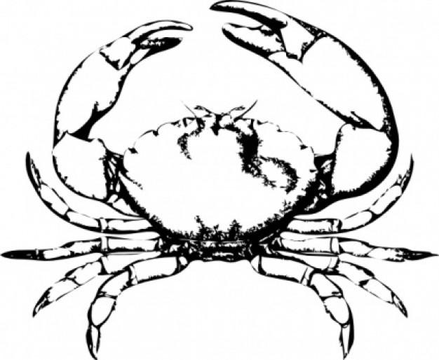 Crab clip art cartoon free clipart images 4 6