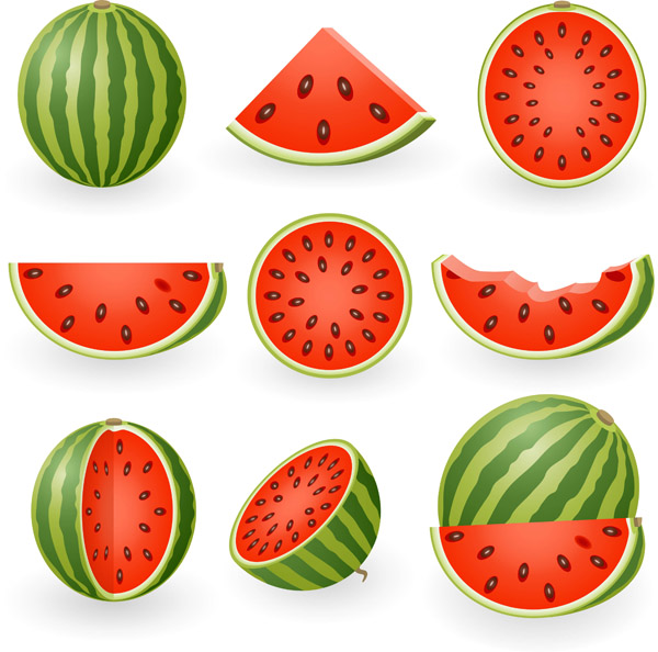 Cute watermelon clipart fruit clip art