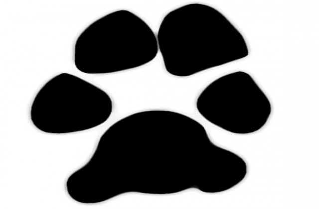 Free dog paw clipart image 4 tag for paws