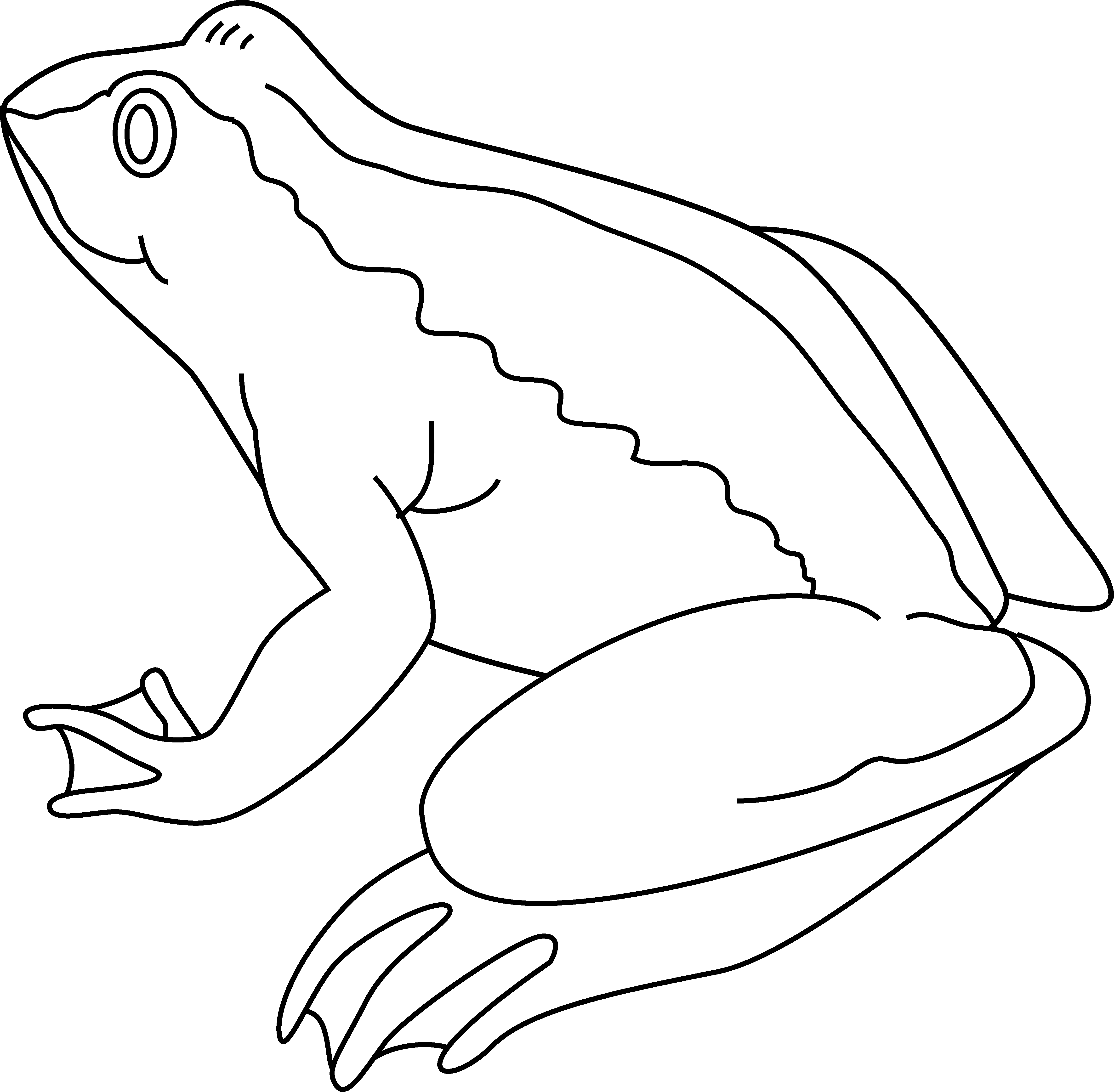 Frog  black and white frog clipart black and white 8