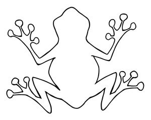 Frog  black and white frog outline party ideas frogs drawings of and clipart