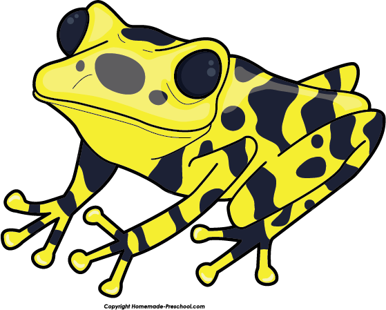 Frog clipart 4 free images
