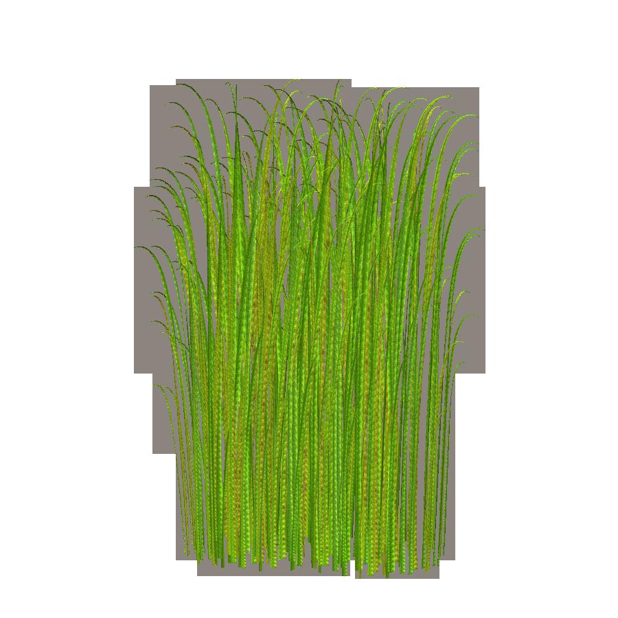 Grass clip art free 2