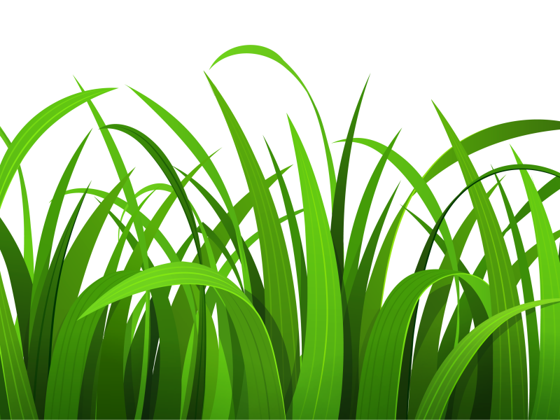 Grass clip art free clipart images 4