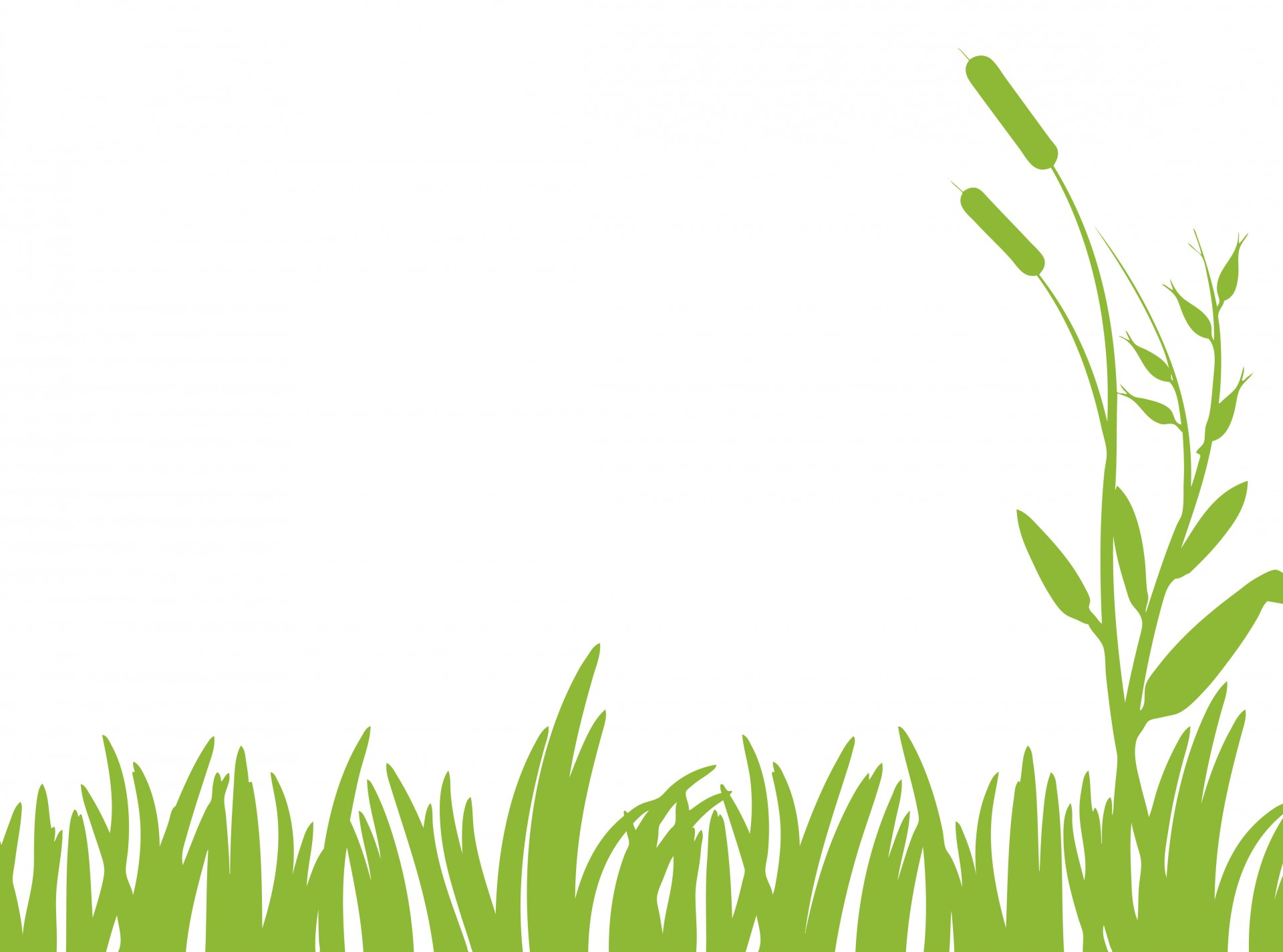 Grass clip art free clipart images 5