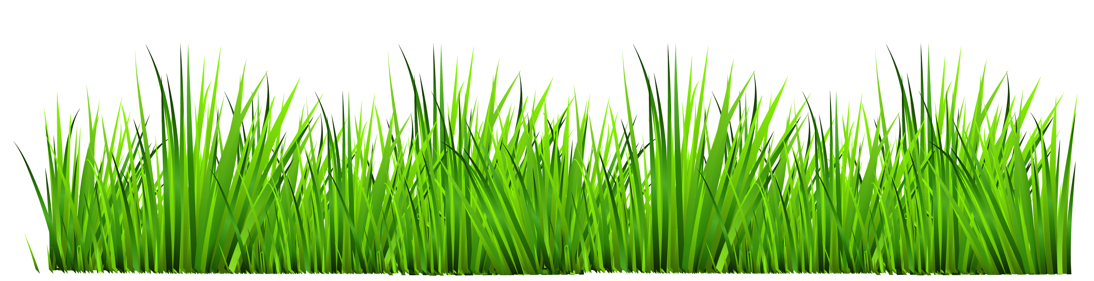 Grass clip art free clipart images
