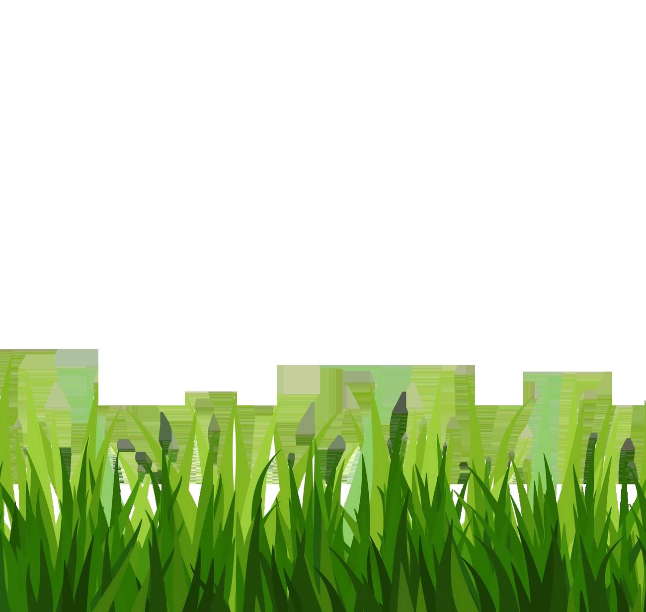 Grass clipart 3
