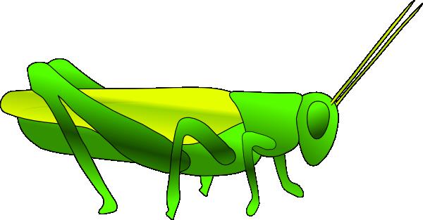 Grasshopper clipart images free 2