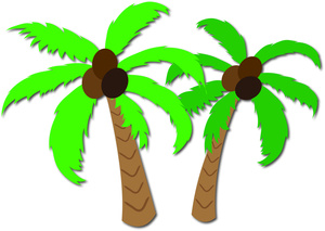 Hawaiian coconut clipart