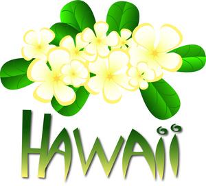 Hawaiian hawaii clipart 2