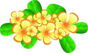 Hawaiian plumeria flowers clipart image tropical typical of hawaii