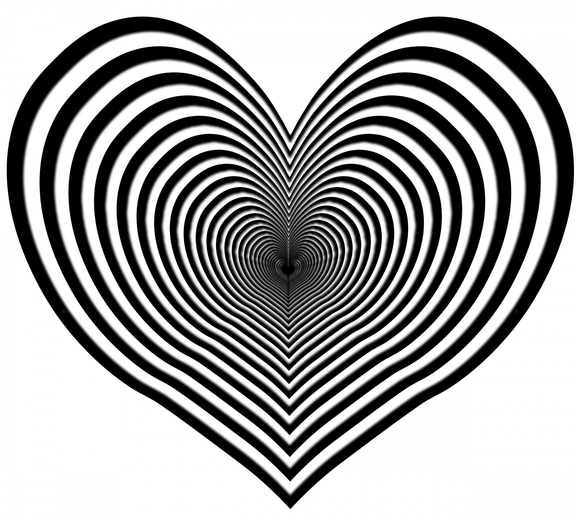 Heart zebra clipart free pictures