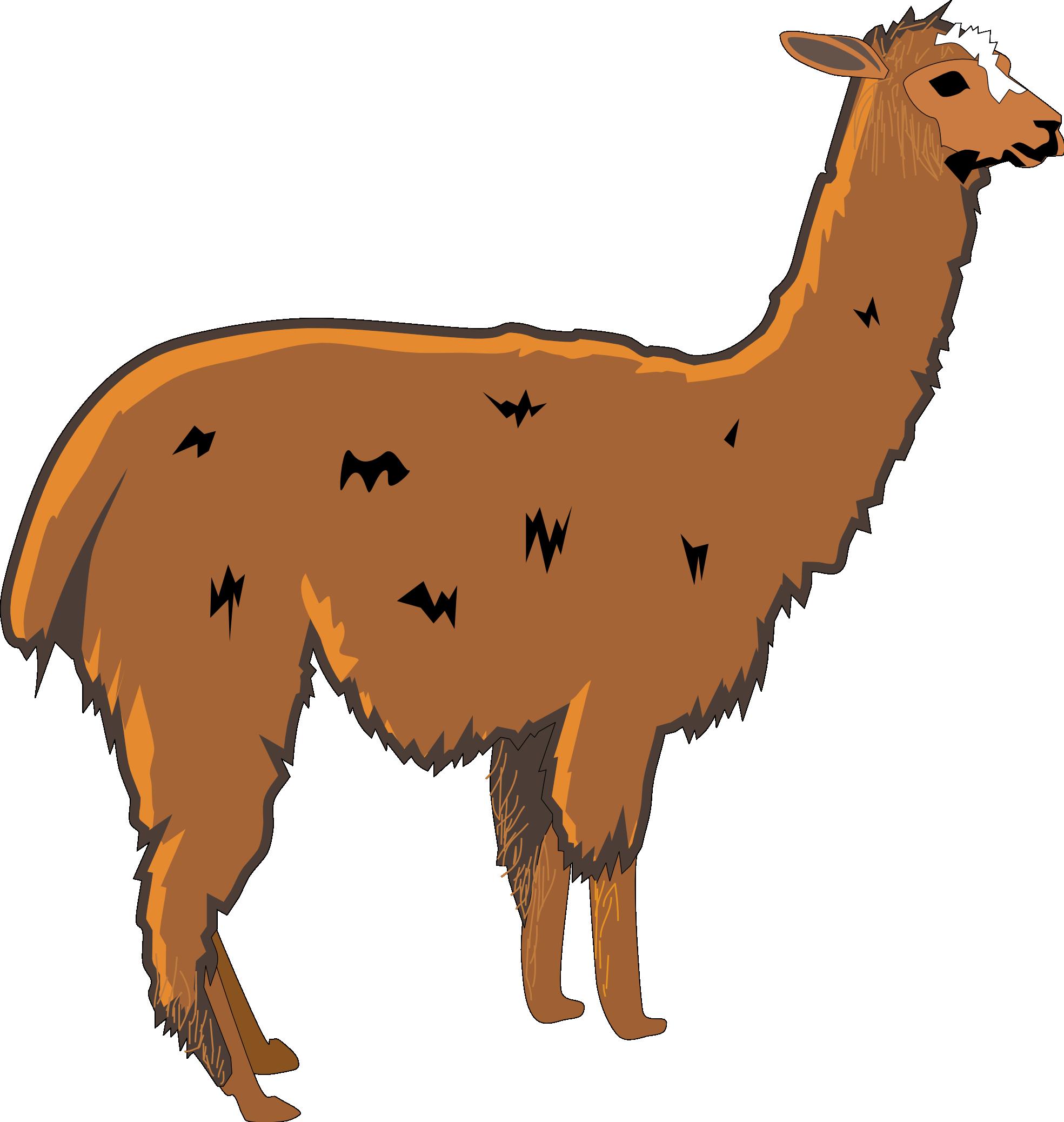 Llama clip art cartoon free clipart images 2