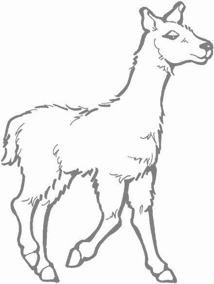 Llama clipart vector magz free download graphics image 2