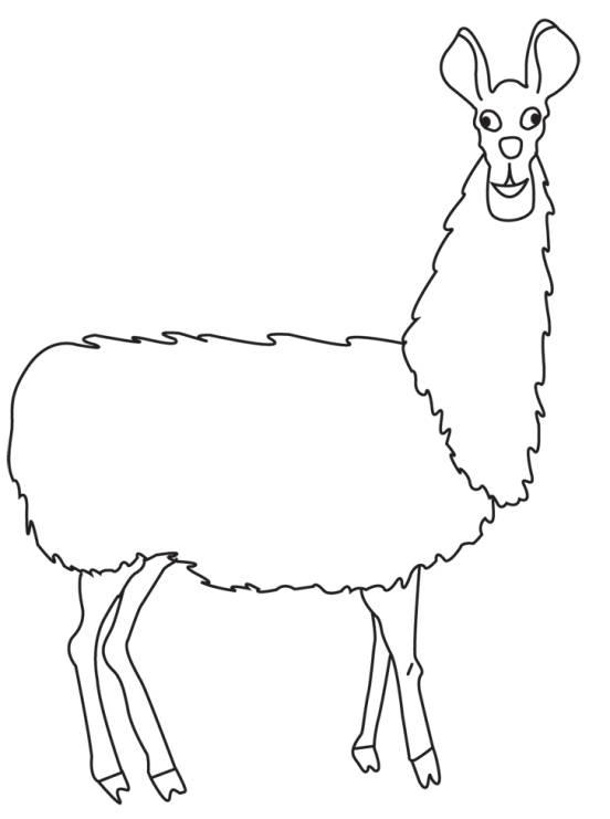Llama drawing clipart 2