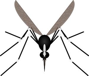 Mosquito clip art download