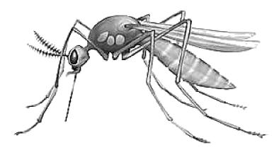 Mosquito clipart 2 4