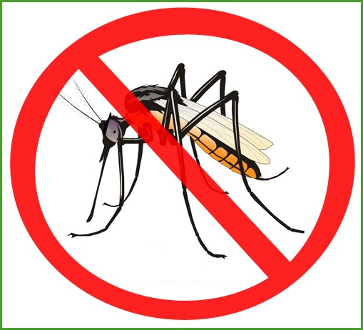 Mosquito cliparts 2