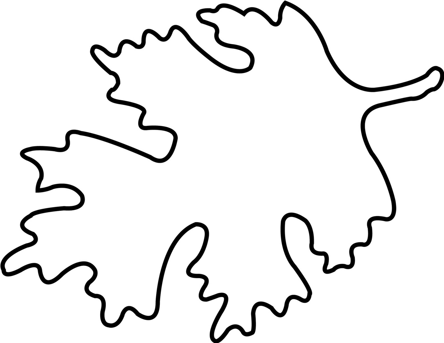 Oak leaf outline printable clipart free to use clip art resource