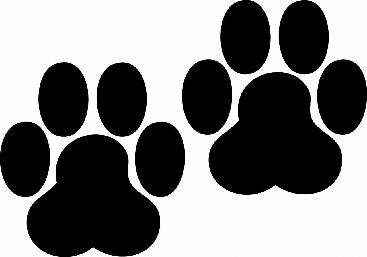 Paw print tattoos on dog paw prints scroll clipart 3 4 2