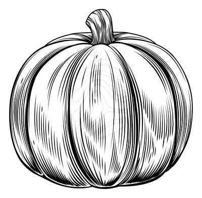 Pumpkin  black and white vintage pumpkin clip art