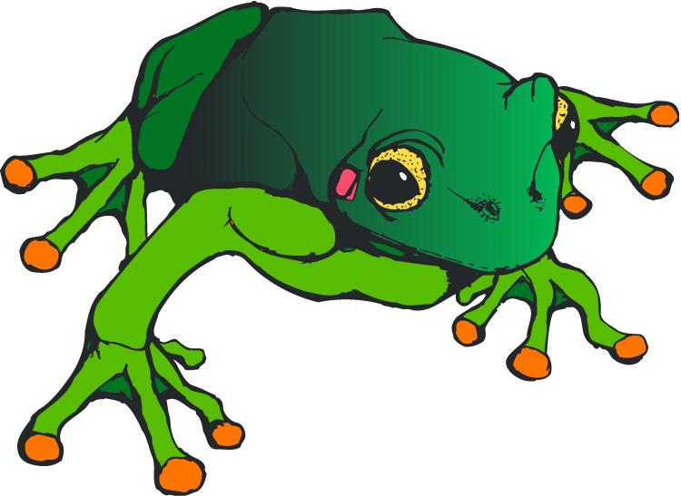 Sad frog clipart 2