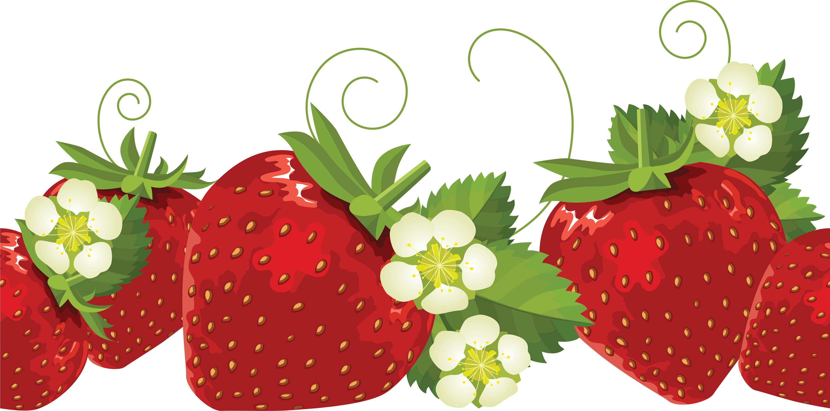 Strawberry clip art free clipart images 2