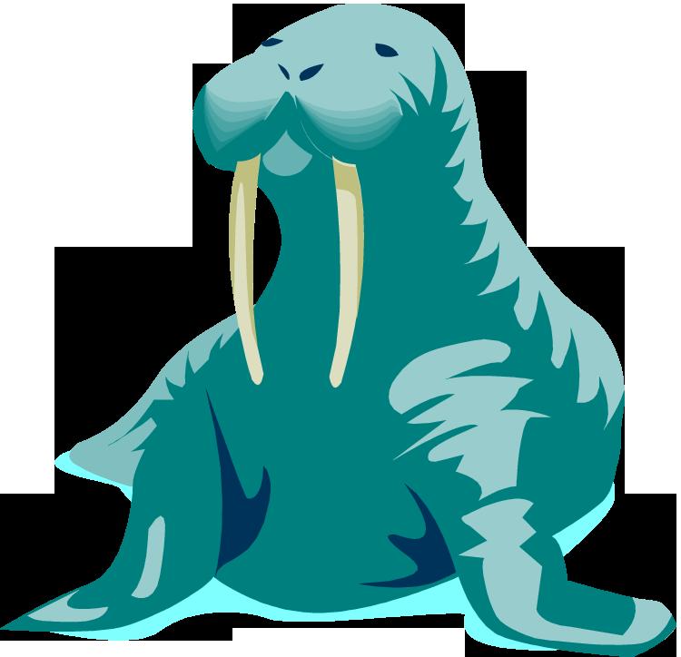 Walrus clipart 17