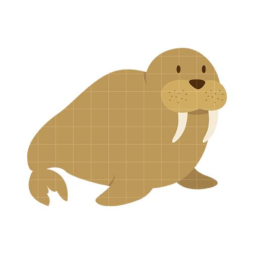 Walrus clipart 6