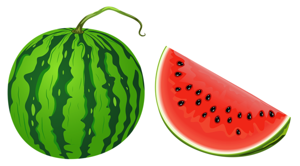 Watermelon clip art 4