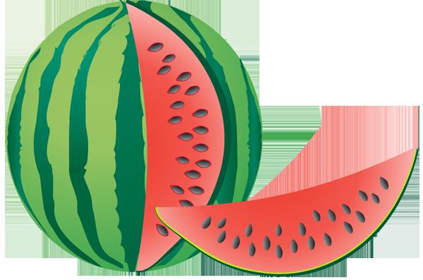 Watermelon clip art images free clipart 2