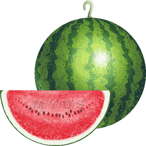 Watermelon clipart free clip art image 1 2