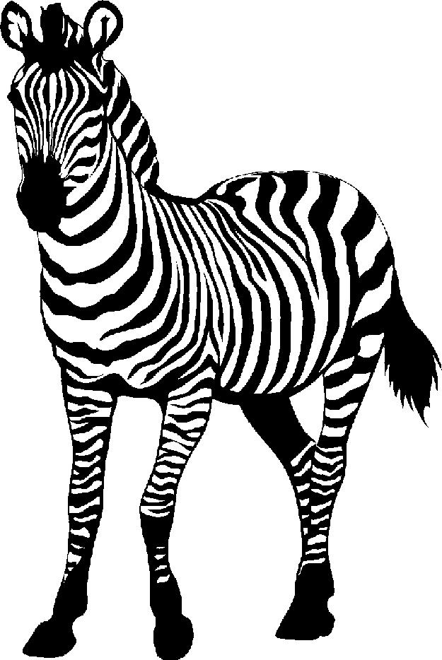 Clipart Zebra