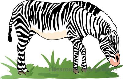 Zebra images clip art on share - WikiClipArt