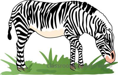 Zebra clipart zebra 2a