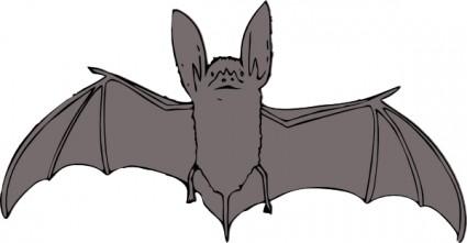 Bat  black and white bat school teacher black and white clipart