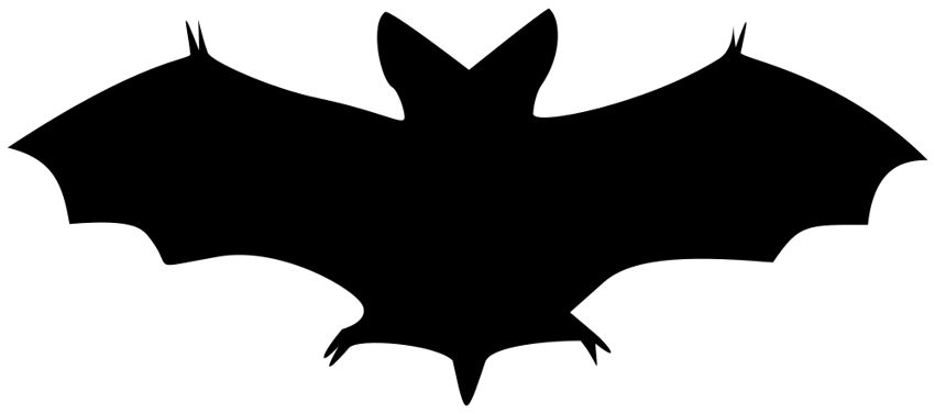 Bat  black and white halloween bat clipart black and white free 5