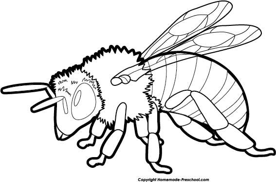 Bee  black and white bee clipart black and white 4